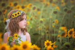 sunflower flower crown boho wedding hair accessory floral wreath yellow sunflowers bridesmaid hair
