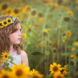sunflower flower crown boho wedding hair accessory floral wreath yellow sunflowers bridesmaid hair