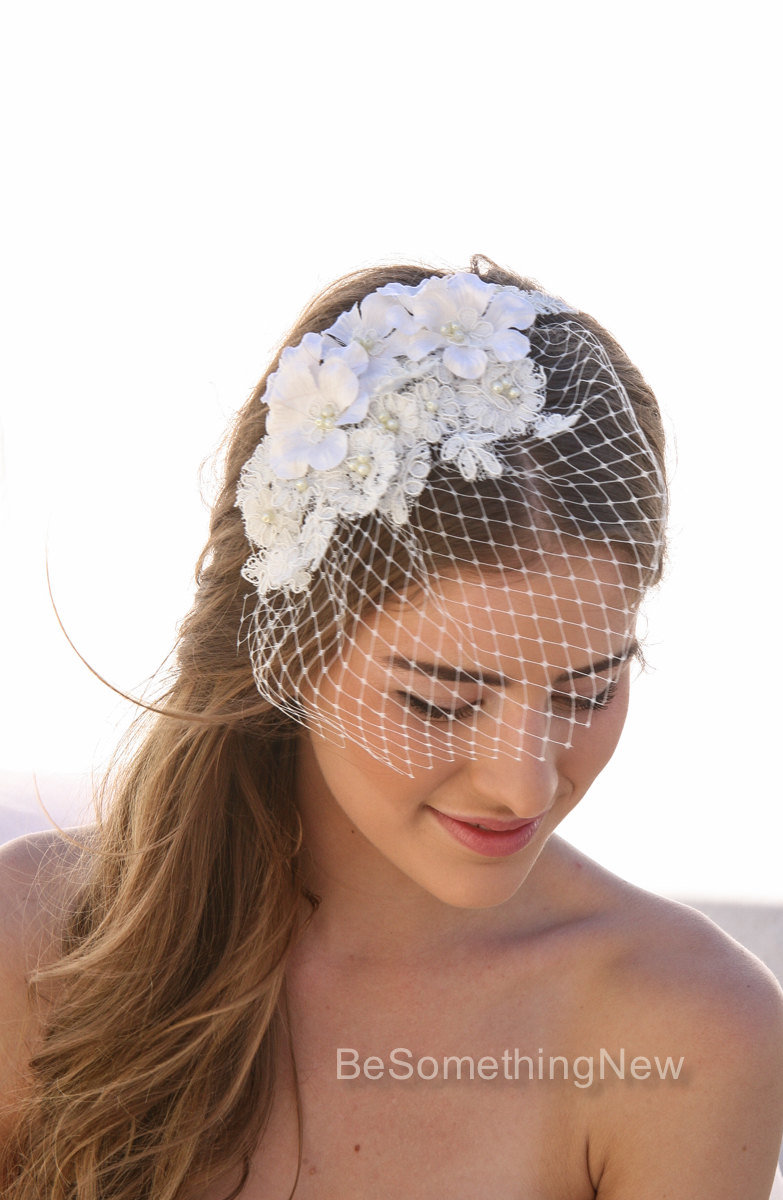 Birdcage Veil With Ivory Lace And Vintage Flower Petals Small Pearls Wedding Bird Cage Be Something New